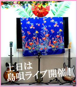 hibiscusLive.jpg